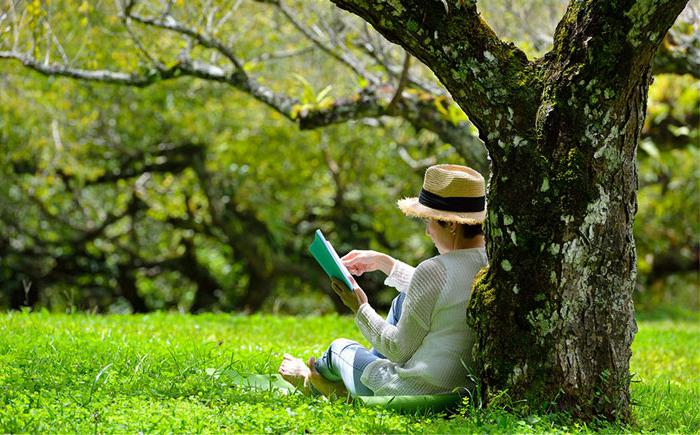 Woman reading outside under a tree