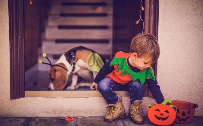 A child and dog in Halloween costumes