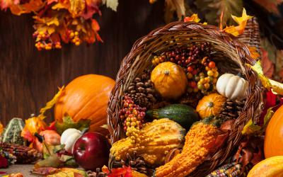 Wicker cornucopia filled with fall fruit and gourds